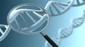 Τα γονίδια διαδραματίζουν σημαντικότατο ρόλο στη παχυσαρκία. Γιατί λοιπόν κάποιοι αρνούνται να το παραδεχτούν;