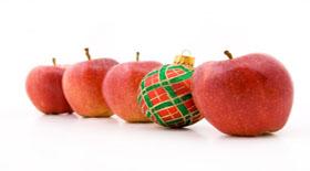 Συμβουλές προς «ναυτιλλομένους» τα Χριστούγεννα..