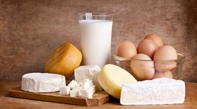 Ασβέστιο – γαλακτοκομικά και παχυσαρκία: Η συνάντησή μου με τον καθηγητή M. Zemel