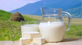 Γάλα γαϊδούρας: Είναι πράγματι τόσο ευεργετικό;