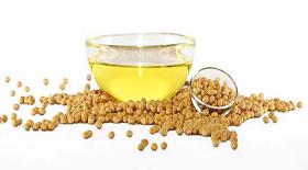 Το σογιέλαιο ενδέχεται να συμβάλει στην παχυσαρκία και στον διαβήτη περισσότερο από ότι η φρουκτόζη.