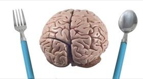 Πώς τα λιπαρά τρόφιμα επηρεάζουν την λειτουργία του εγκεφάλου