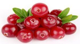 Τα Cranberries βοηθάνε στις λοιμώξεις του ουροποιητικού συστήματος , αλλά όχι ο χυμός τους…