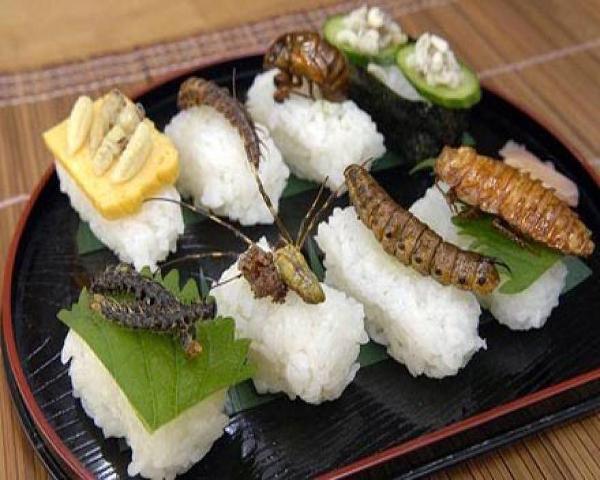 Είναι τα έντομα  πιο θρεπτικά από το κρέας;